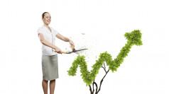 Turning Data Management into a Profit Generator