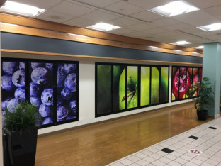 The in-plant used the Mimaki to print window clings to cover the glass doors of the empty coolers in a dining area.